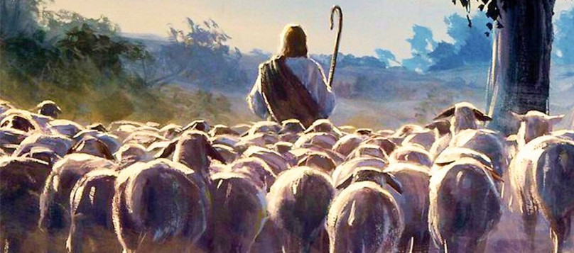 Jesus and the lambs