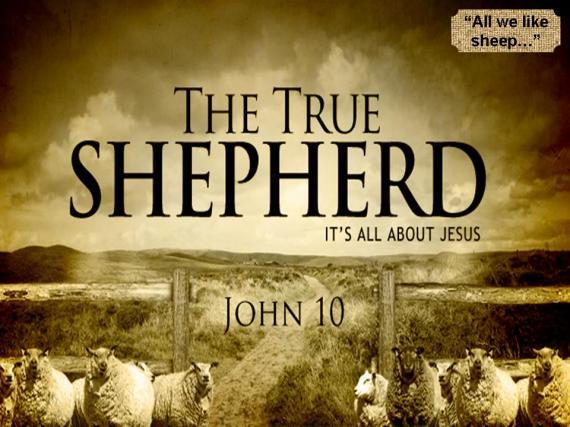 the-true-shepherd